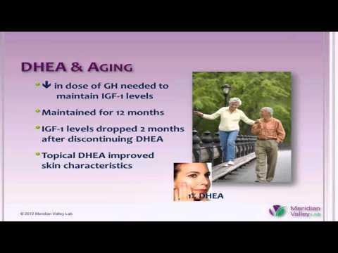 DHEA: The Multidimensional Hormone