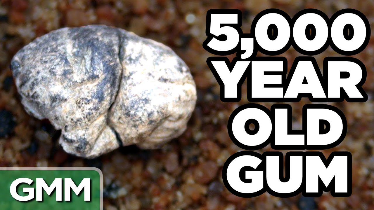 Oldest Things On Earth Game Youtube