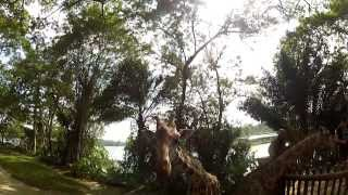 Malaysia and Singapore Trip 2013 - KL, Georgetown, Cameron Highlands, Perhentian GoPro / Nex