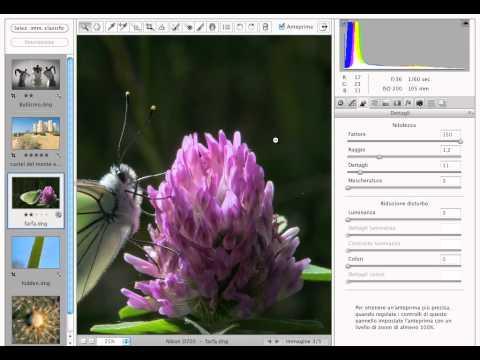 Corso completo di GIMP - Parte 4 - Regolazioni dei colori from YouTube · Duration:  12 minutes 59 seconds