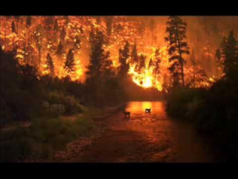 John Huijbers - Wildfire