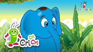 Colaj 8 cantecele cu animale pentru copii I CriCriCri #cantecepentrucopii