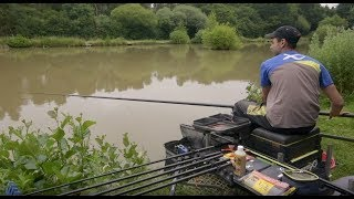 Top tips to catch lots of carp and F1s by fishing shallow