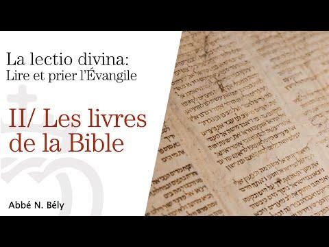 Conférences sur la Lectio Divina - II. Les livres de la Bible - par l'abbé Nicolas Bély