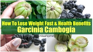 Garcinia Cambogia Weight Loss Health Benefits