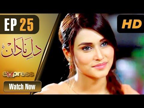 Dil E Nadaan - Episode 25 - Express Entertainment Dramas