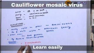 Cauliflower mosaic virus ll biology ll