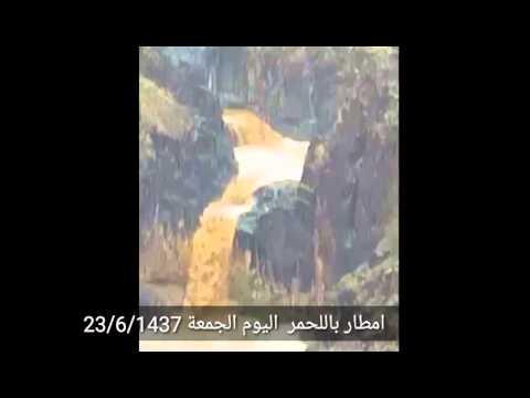 سيول باللحمر اليوم الجمعة 23/6/1438