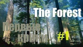 The Forest - Начало!(Прохождение долгожданной альфа-игры с элементами хоррора и выживания. Вы сделаете мне приятно перейдя..., 2014-05-31T14:51:16.000Z)