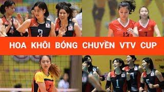 Vẻ đẹp của dàn hoa khôi bóng chuyền VTV Cup 2017