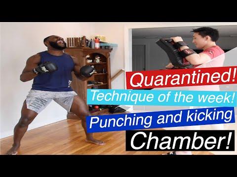 Coronavirus Quarantine Striking Technique Of The Week | Punching and Kicking Chamber