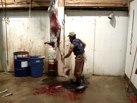 How to skin a deer in 6 minutes