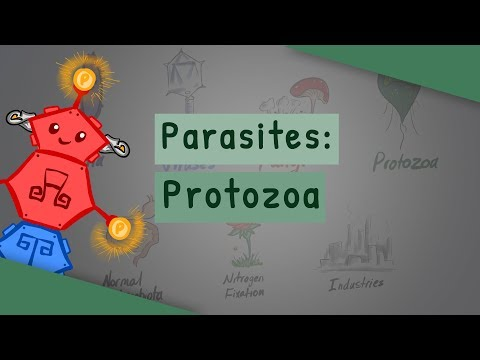 Disease: Protozoan Pathogens   A-level Biology   OCR, AQA, Edexcel from YouTube · Duration:  8 minutes 4 seconds