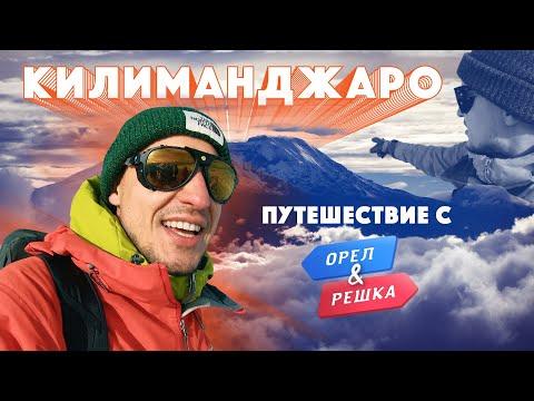 Килиманджаро с Орёл