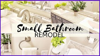 Small Bathroom Remodel on a budget boys Jack and Jill bathroom Decorate with plants