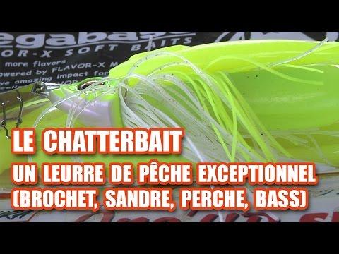 Le CHATTERBAIT, un leurre de pêche EXCEPTIONNEL !!! (brochet, sandre, perche, bass)