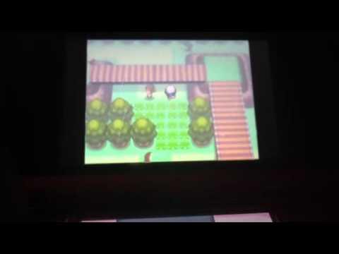 Pokemon Platinum: Catching Lickitung