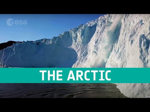 The Arctic: a delicate icy ecosystem