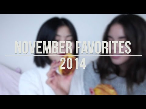 November Favorites 2014
