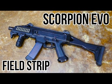CZ Scorpion Evo Field Strip (SBR)
