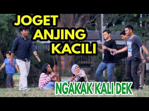 NGAKAK!! JOGET ANJING KACILI DI DEPAN CEWEK CANTIK - PRANK INDONESIA