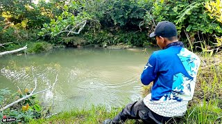 MANCING IKAN LANGKA DI TAHUN 2020 JUNGLE PERCH FISHING MANCING PATRIA 124 01 02 20