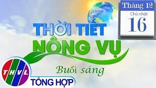 THVL | Thời tiết nông vụ (6h25 ngày 16/12/2018)