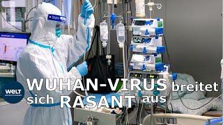 WUHAN-VIRUS: Werden jetzt die Deutschen evakuiert?