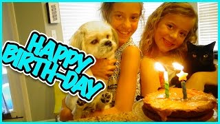 DIESEL TURNS 2 AND WE ALMOST RUN OVER A TURTLE! FAMILY VLOG  SMELLY BELLY TV