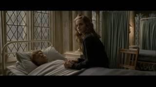Ron + Hermione (Bleeding Love)