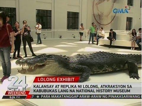 24 Oras: Kalansay At Replika Ni Lolong, Atraksyon Sa Kabubukas Lang Na National History Museum