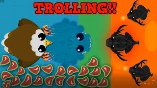 Mope.io RARE GOLDEN EAGLE TROLLING HIGH TIER ANIMALS! - Funny Mope.io Troll
