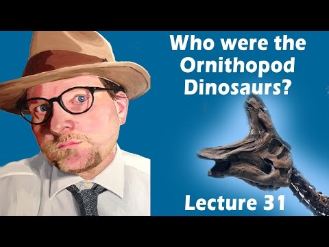 Who were the Ornithopod dinosaurs?