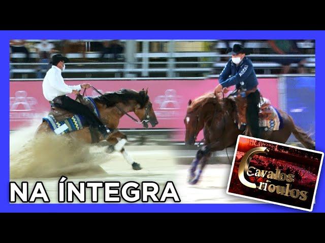 Programa Cavalos Crioulos - 20/12/2020
