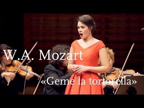 "W.A. Mozart: ""Geme La Tortorella"" From ""La Finta Giardiniera"" | Regula Mühlemann"