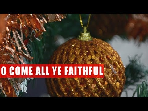 O Come All Ye Faithful || Kolęda po angielsku