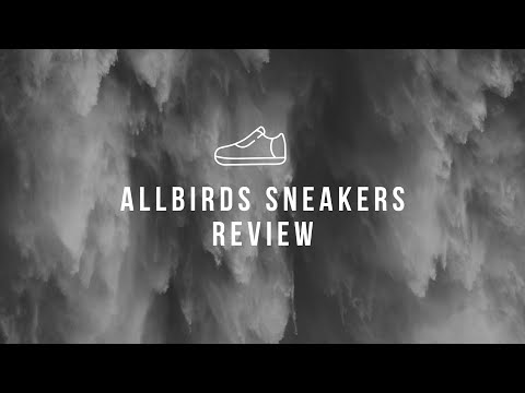 allbirds-sneakers-review