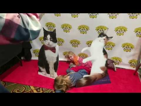 2018 Portland International Cat Show