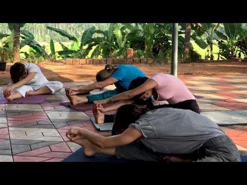Hormone Yoga Therapy