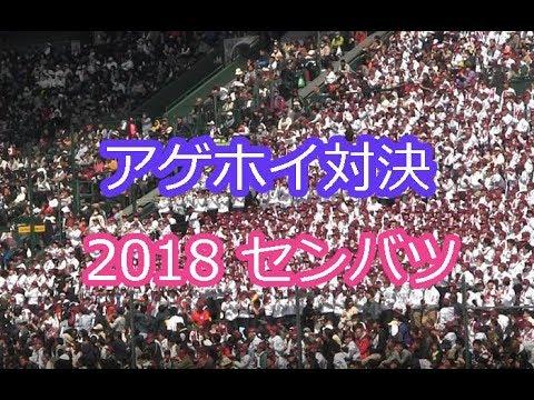 アゲホイ対決 サンバデジャネイロ 2018 センバツ ブラバン甲子園 高校野球応援歌 吹奏楽 チアリーダー