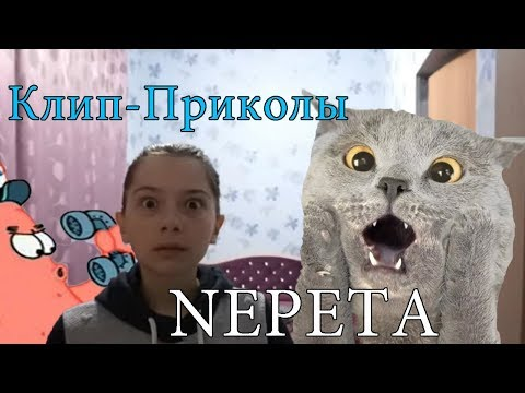 КЛИП-ПРИКОЛЫ NEPETA СТРАШИЛКИ
