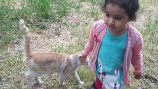 bebeklerin kedi ile komik anları 2020