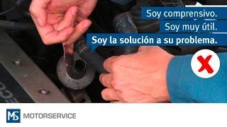 Sistema de aire secundario - Consejos para la búsqueda de averías - Motorservice Group