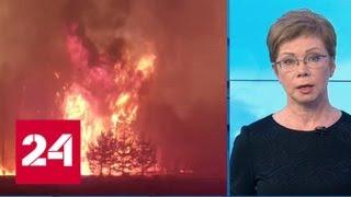 """Смотреть видео """"Погода 24"""": пожары в Зауралье усилились в праздничные дни - Россия 24 онлайн"""
