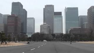 東京丸の内仲通りのシマウマと皇居の白鳥.