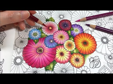 basic-flowers-coloring-|-ivy-and-the-inky-butterfly