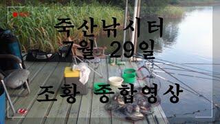 죽산낚시터 7월 29일 조황 종합