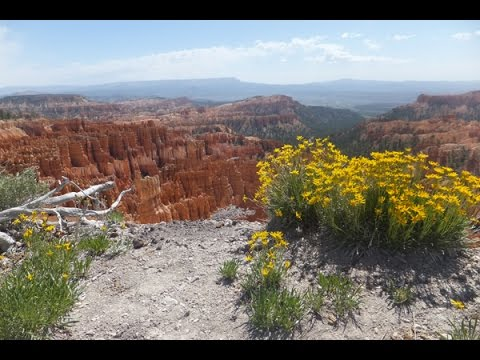 bryce canyon national park (video by ben&hanny)