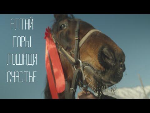 2020 Алтай, горы, лошади, счастье