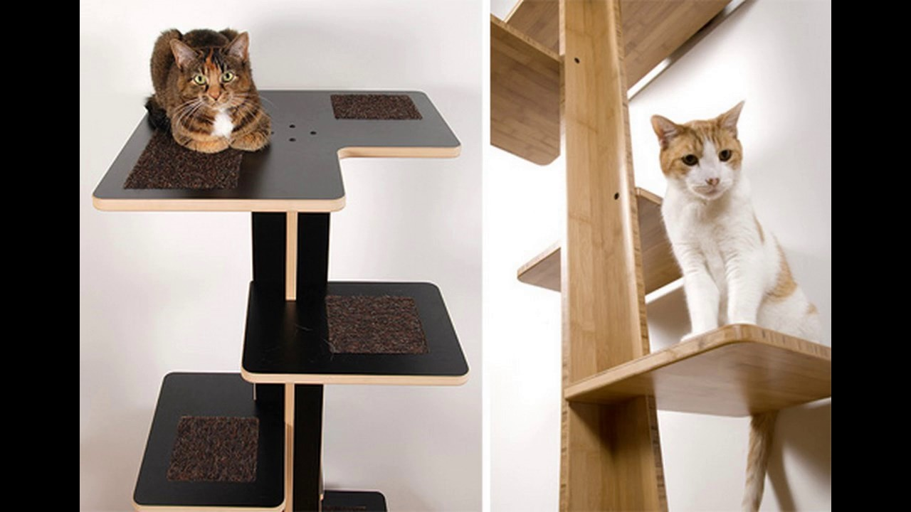 Ideas modernas de dise o de muebles para gatos youtube for Idea de muebles quedarse